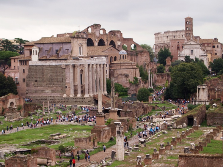 View of the Forum with the Colosseum in the background.