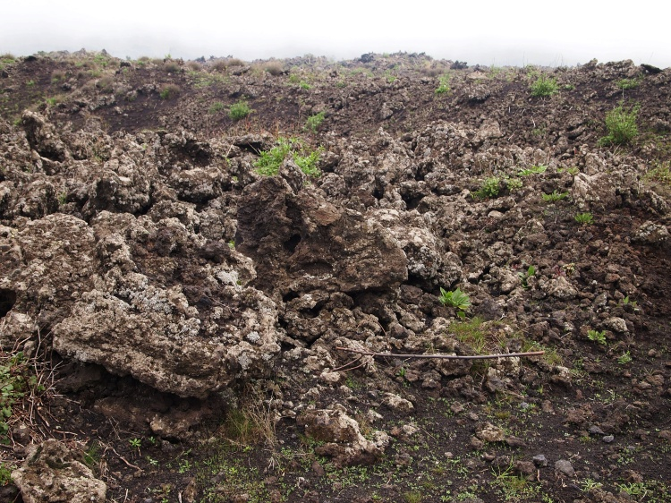 Remnants of the 1792 eruption. You can see traces of the first signs of life reclaiming the rocks.