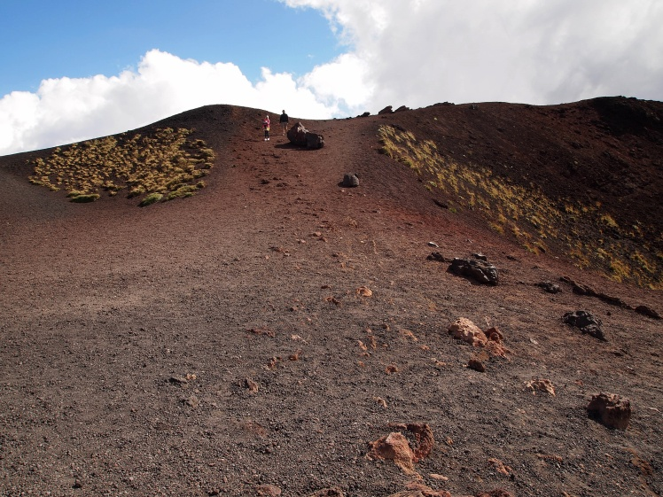 The craters were formed during the 1892 eruption - which explains their sparse plant growth.