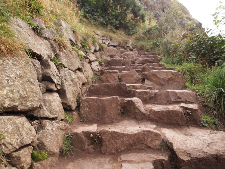 Some paths included stairs, others were simply dirt trails.