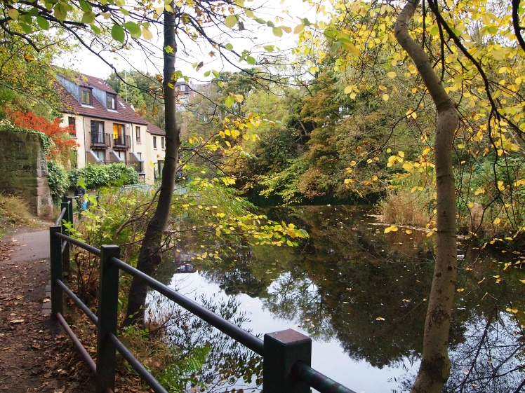 The River Leith and fall leaves - the perfect combination.